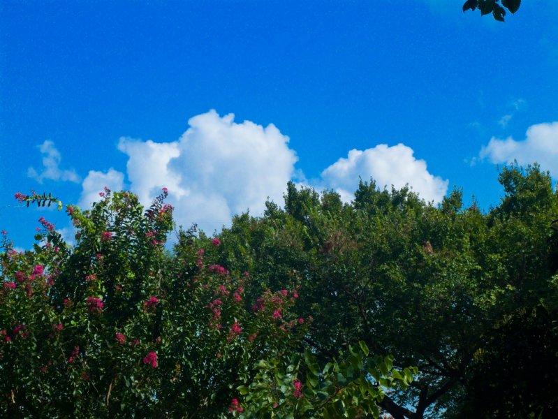 Clouds08232007