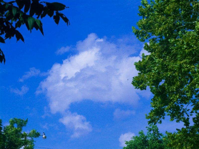 Clouds2_08232007